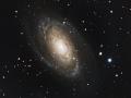 Messier 81_foorumi